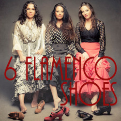 6 Flamenco Shoes