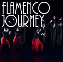 Flamenco Journey