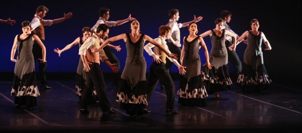 Youth Flamenco Ballet
