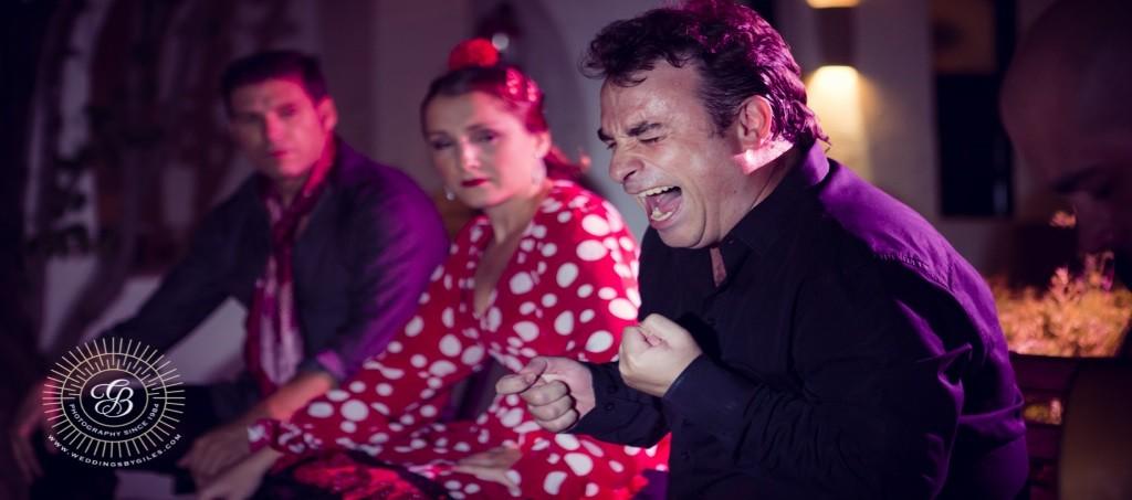 Flamenco Agency Dance Company