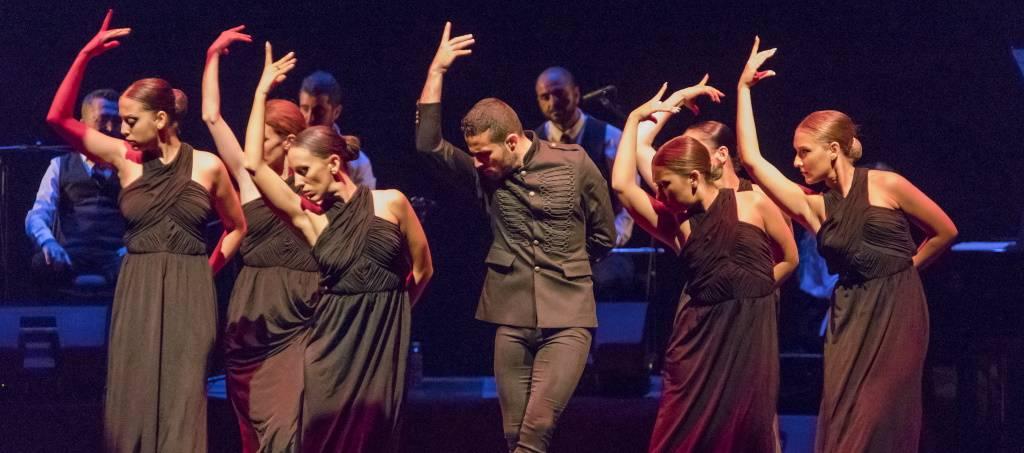 flamenco_2019